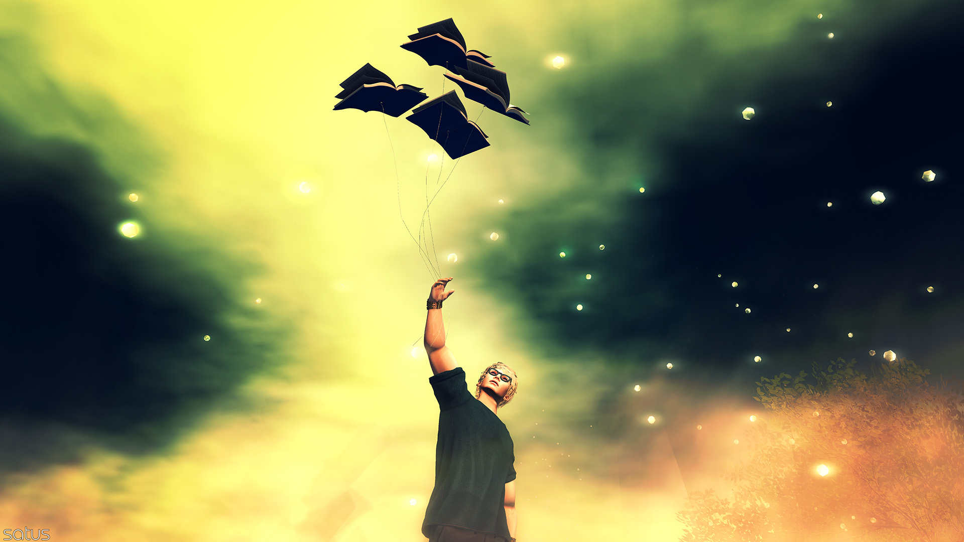 If books can fly
